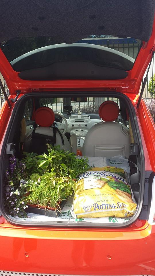 You don't need a truck to garden. Hauling home in the EV.